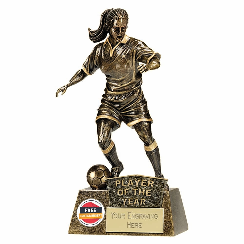 PLAYER OF THE YEAR FOOTBALL GOLD TROPHY AWARD 22CM **FREE ENGRAVING**