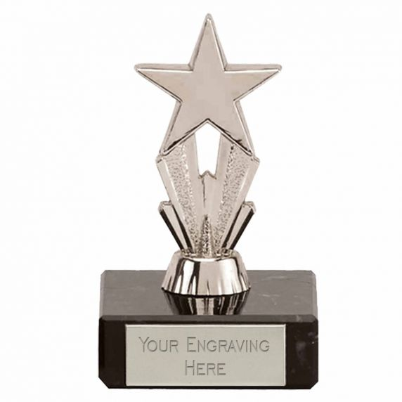 PHOTOGRAPHY trophy pewter color finish gold metal insert marble base